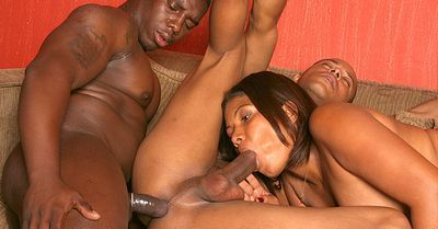 Black And Bisexual torrent